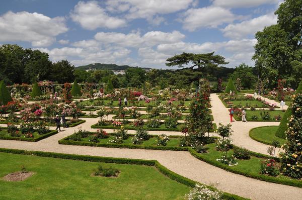 Jardin_de_Bagatelle_001.JPG
