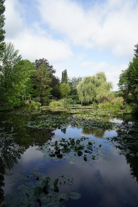 モネの庭.jpg